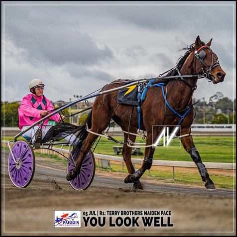 YOU LOOK WELL, driven by Laura Rusten, wins at the Parkes Trots last 05 July 2020.