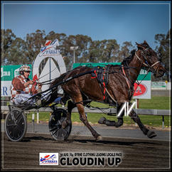 CLOUDIN UP, driven by Nathan Townsend, wins at Parkes Trots last 30 August 2020