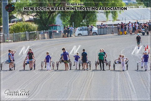 20190421 NSW Mini Trots Championships - Day 2 - Team Relay - 101