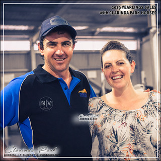 2019 Bathurst Gold Crown Yearlings Sale. Nathan Townsend and Mary Ann O'Shea were the preparers for the yearlings who got top sale at the yearlings sale.