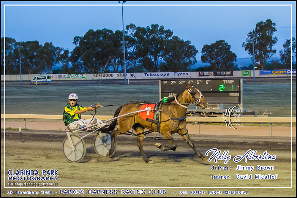 Race 5: Bruce Large Memorial has been won by Nelly Albertina driven by Jimmy Brown and trained by David Micallef