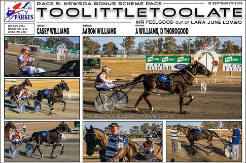Toolittletoolate wins at Parkes Harness Trots