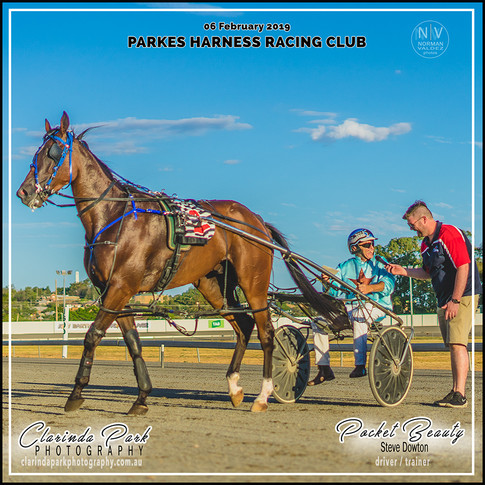 "Race 3 ""PARKES BETTA ELECTRICAL PACE"" Winner: Pocket Beauty"