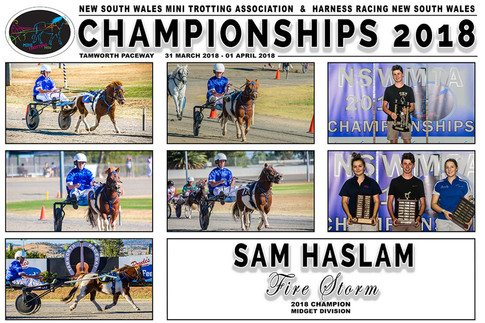 NSW Mini Trots Championships 2018 - SAM HASLAM with FIRE STORM