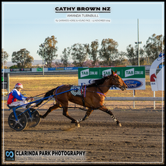 PARKES HARNESS - Race 3 - GARRARDS HORSE & HOUND PACE - CATHY BROWN NZ wins at Parkes Trots