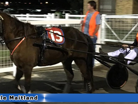 NEWCASTLE MAITLAND Mini Trots Races This Weekend