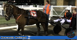 DOUBLE O SEVEN. GRACE CAMPBELL. New South Wales Mini Trots. Newcastle Maitland Mini Trots