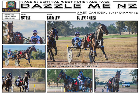 Peak Hill Harness Racing Club - Race 6 - CENTRAL WEST FUNERALS PACE