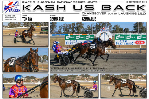 Kash Us Back wins at Parkes Harness Trots