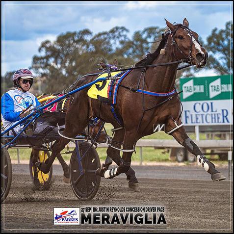 MERAVIGLIA, driven by Mat Rue, wins at Parkes Harness