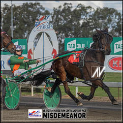 MISDEMEANOR, driven by Madi Young, wins at Parkes Trots last 16 August 2020