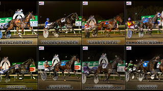 Congratulations to PARKES HARNESS Racing Club Race Meeting Winners - 02 July 2021
