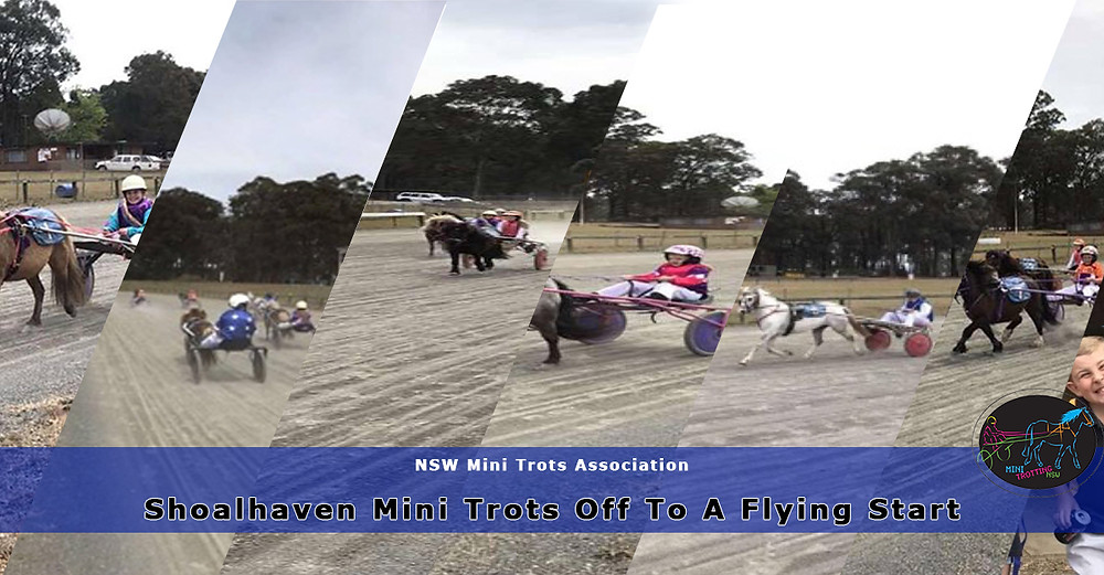 Shoalhaven Mini trots Off to a Flying Start. New South Wales Mini Trots.