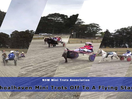 Shoalhaven Mini Trots Off To A Flying Start