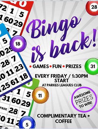 Parkes Bingo Game Event