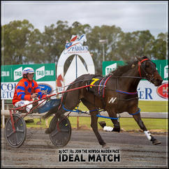 IDEAL MATCH, driven by Steve Turnbull, wins at Parkes Harness
