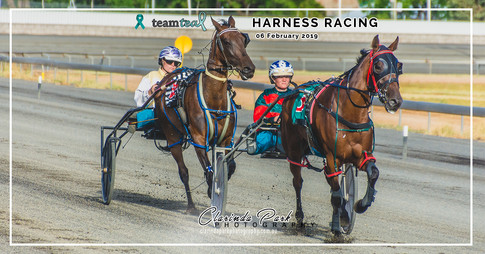 PARKES HARNESS RACING CLUB - Team Teal Harness Racing