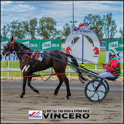 VINCERON, driven by Tony Higgs, wins at Parkes Harness