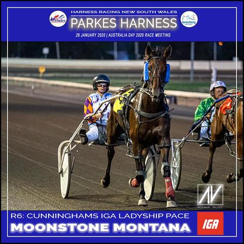PARKES HARNESS AUSTRALIA DAY - Race 6 - CUNNINGHAMS IGA LADYSHIP PACE - MOONSTONE MONTANA wins at Parkes Trots.