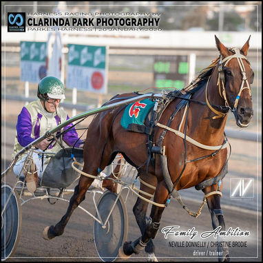 26 January 2020 - Australia Day At The Trots 2020 - FAMILY AMBITION wins Parkes Trots