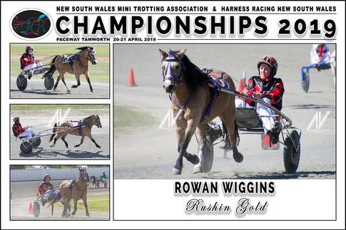 WIGGINS Rowan - Rushin Gold - 000