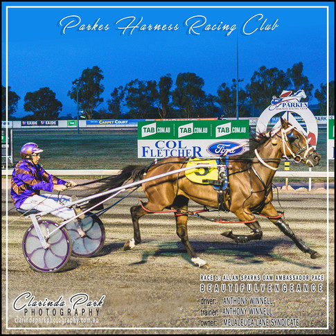 R1 - ALLAN SPARKS OAM AMBASSADOR PACE - BeautifulVengeance - Anthony Winnell - 003