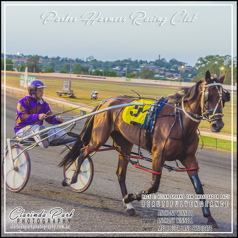 R1 - ALLAN SPARKS OAM AMBASSADOR PACE - BeautifulVengeance - Anthony Winnell - 001