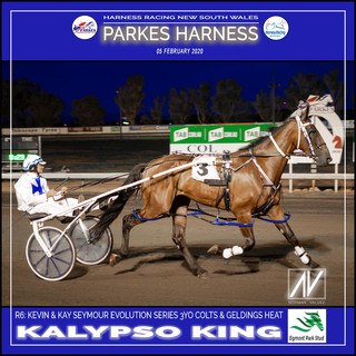 PARKES HARNESS - Race 6 - KEVIN & KAY SEYMOUR EVOLUTION SERIES 3YO COLTS & GELDINGS HEAT - KALYPSO KING wins at Parkes Trots.