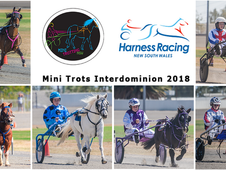 NSW Mini Trots Releases Its Representatives for Inter Dominion 2018
