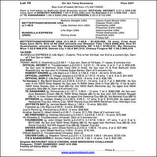 2019 Bathurst Gold Crown Yearlings Sale - Lot 070