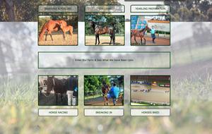 Clarinda Park Horses services