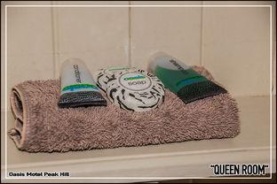 Oasis Motel Peak Hill - Queen Room - 020