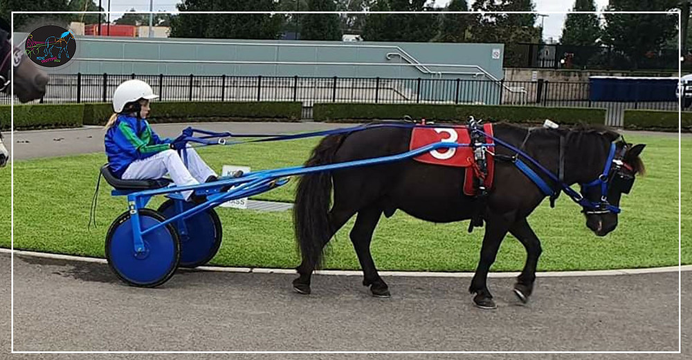 Menangle Park Mini Trots - Lilly McCarthy with Sparkling Star