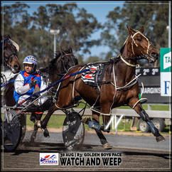 WATCH AND WEEP, driven by Brett Hutchings, wins at Parkes Trots last 30 August 2020