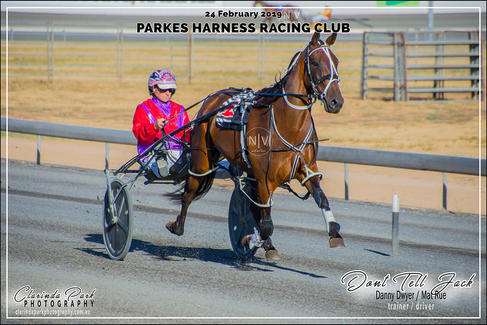 Race 1 - TAB Pace - DONT TELL JACK - Mat Rue