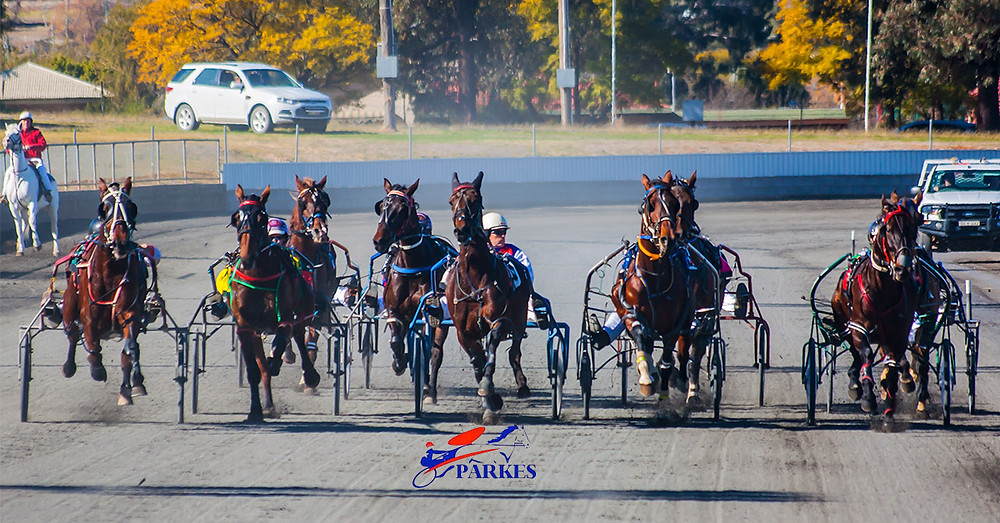 Parkes Harness Racing Club. Harness Racing Photography by Clarinda Park Photography