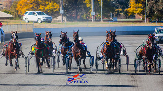 Horses Qualifies for the Nominations for the Heats of Garrards Dubbo/Parke Rio Meteors Series