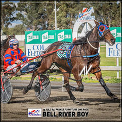 BELL RIVER BOY, driven by Steve Turnbull, wins at Parkes Trots last 19 July 2020