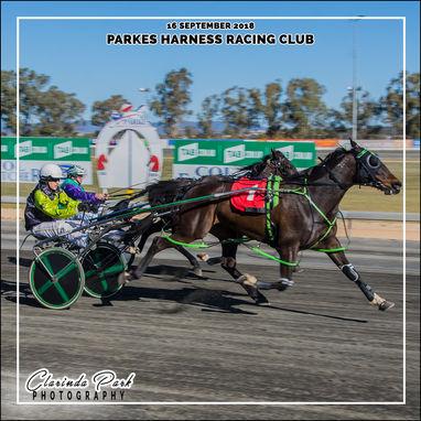 16 SEPTEMBER 2018 - Parkes Harness