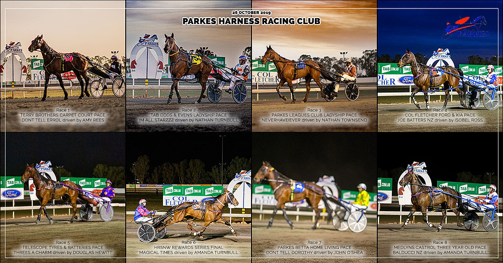 PARKES HARNESS Racing Club winners on 26 October 2019: Dont Tell Errol - Im All Starzzz - Neverhaveiever - Joe Batters NZ - Threes A Charm - Magical Times - Dont Tell Dorothy - Balducci NZ