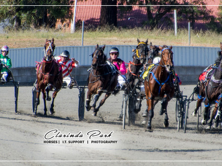 Look at the Parkes Harness Racing Photos from last Race Meeting on 12 May 2019