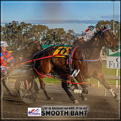 SMOOTH BAHT, driven by Steve Turnbull, wins at Parkes Harness.