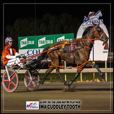 IMA CUDDLEY TOOTH, driven by Mitch Turnbull, won at the Parkes Trots