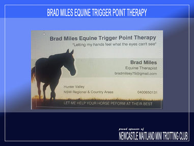 Brad Miles Equine Trigger Point Therapy is a proud sponsor of Newcastle Maitland Mini Trots