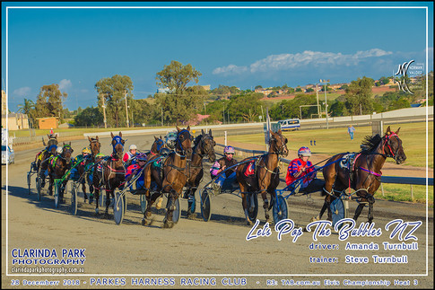 Race 3 - TAB com au Elvis Championship Heat 3 - 02 - Facebook Uploads - LETS POP THE BUBBLES - Amanda Turnbull - 002
