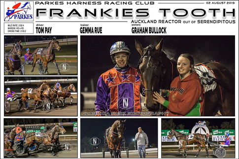 FRANKIES TOOTH wins at Parkes Harness Trots