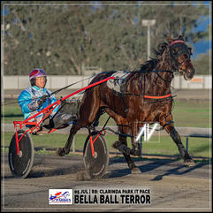 BELLA BALL TERROR, driven by Doug Hewitt, wins at the Parkes Trots last 05 July 2020.