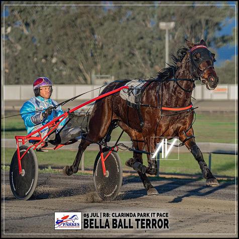 BELLA BALL TERROR, driven by Doug Hewitt, wins at the Parkes Trots last 05 July 2020.