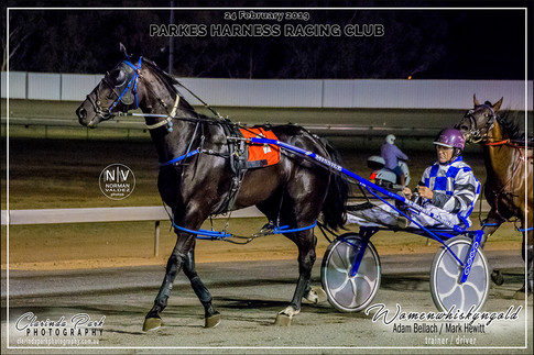 R8 GET REAL SUPPORT TEAL 3YO COLTS AND GELDING Pace - WOMENWHISKYNGOLD - Mark Hewitt - 103