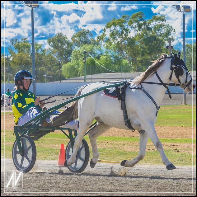 Retiring NSW Mini Trot Driver 2020   Taylah Osmond